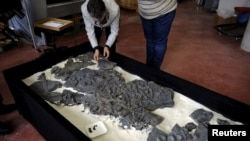 FILE - A fossil of an ichthyosaur is seen at the Jurassic Museum of Asturia in Colunga, northern Spain, Nov. 6, 2015.