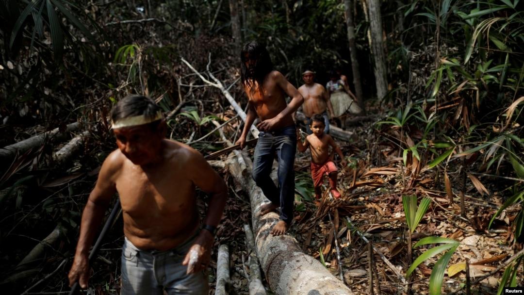 Tho dan quyet bao ve rung Amazon 'den giot mau cuoi cung' hinh anh 11