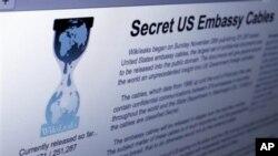 SAD upozoravaju i ponekad sele na sigurno osobe čija su imena razotkrivena na WikiLeaksu
