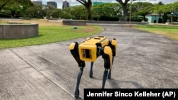 There are about 500 Spot robots in use. Perry said they are used by companies to inspect areas with dangerous levels of electricity. Spot is also used in building sites, mines and factories. Spot, a robotic Honolulu police dog, stands outside department headquarters on Friday May 14, 2021. (AP Photo/Jennifer Sinco Kelleher)