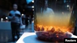 Anggur berisi tikus yang dipamerkan di Disgusting Food Museum di Malmo, Swedia, Minggu, 4 November 2018. (Foto: TT News Agency/Johan Nilsson via Reuters)