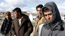 مهاجران غیرقانونی بریتانیا، در صف گرفتن غذا از یک سازمان امدادگر فرانسوی