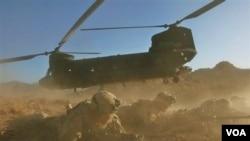 Helikopter Chinook milik NATO sedang dalam operasi militer di provinsi Helmand, Afghanistan (foto: dok.). Helikopter NATO jenis ini yang jatuh di provinsi Wardak dan menewaskan 38 orang, Sabtu (6/8).