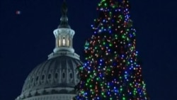Christmas Tree Arrives at the US Capitol
