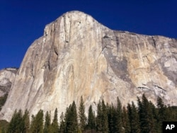 In Free Solo Love Proves A Steeper Challenge For Honnold Than El Cap