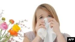 Mevsimsel Alerji Amerika'da Ciddi Bir Sorun
