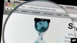 نئی ویب سائٹ اوپن لیکس اگلے ہفتے