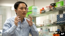 In this file photo, He Jiankui speaks during an interview at a laboratory in Shenzhen in southern China's Guangdong province.