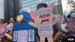 """20歲的大學生李同學參與9月8日的遊行,手持自製的連登討論區表情符號""""連豬"""",表達爭取自由民主,反送中五大訴求,缺一不可。(攝影: 美國之音湯惠芸)"""