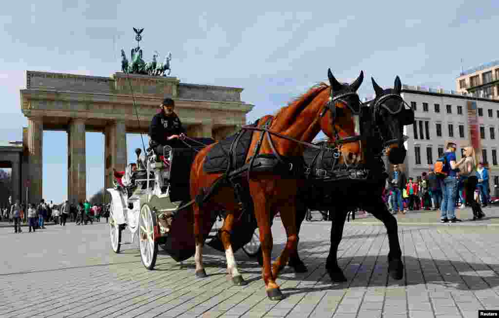 کالسکه مورد استفاده گردشگران در برلین آلمان
