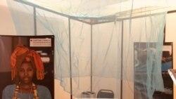 Les Sénégalais exhortés à utiliser la moustiquaire contre le paludisme