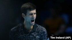 Novak Đoković slavi osvajanje poena protiv Južnoarfikanca Kevina Andersona u Londonu (Foto: Tim Ireland)