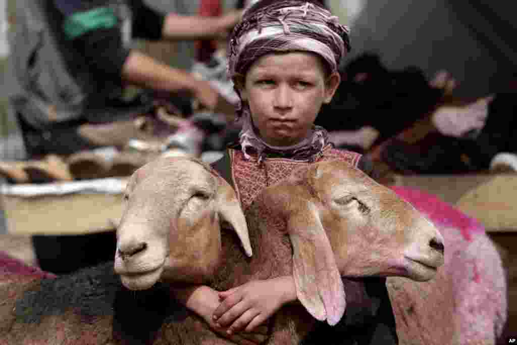 """An Afghan boy waits for customers at a livestock market set up for the upcoming Muslim holiday of Eid al-Adha, or """"feast of sacrifice,"""" on the road side of Kabul, Oct. 13, 2013."""