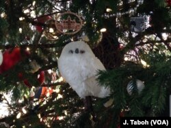 This snowy owl is one of many animals that decorate the giant Douglas fir tree at the U.S. Botanic Garden's holiday display.