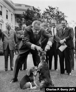 Президент Джонсон тримає за вуха свого собаку, 27 квітня 1964 року