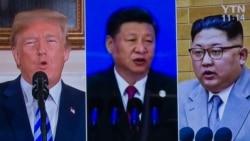 焦点对话:川普取消美朝峰会,习近平要负多大责任?