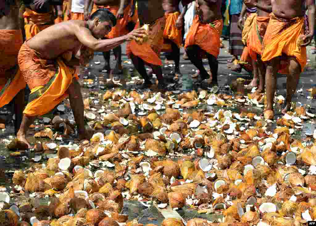 Sri Lankan Tamil Hindu devotees smash coconuts on the ground during the Vel Hinduism festival in Colombo.