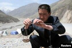 一位当地买家在称量一把冬虫夏草。中国青海省西部,贵德县拉鸡山。