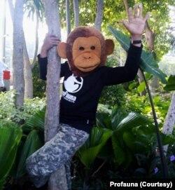 Aktivis Profauna Indonesia memakai topeng primata pada kampanye Hari Primata di Surabaya, Minggu, 26 Januari 2020. (Foto: Profauna)
