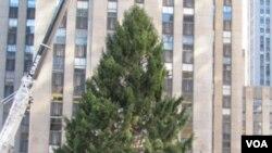 Turis dan warga New York memadati Rockefeller Center untuk melihat pendirian pohon Natal 2010.
