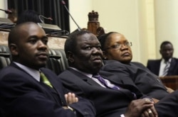 Zimbabwe To Vote On A New Constitution