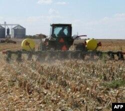 Farmeri u Haj Plejnsu obradjuju samo deo zemlje gde se stavlja seme i djubrivo.