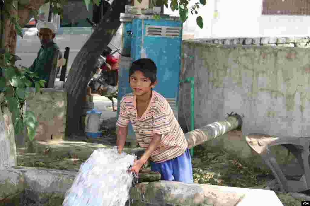 کرونا وائرس کے باعث اسکولوں سے چھٹیاں ہیں، لہذٰا دیہی علاقوں میں بچے بھی فصل کی کٹائی کا عمل دیکھنے کے لیے موجود ہیں۔