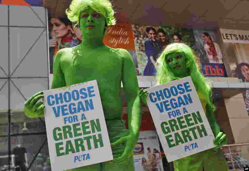 Індія. Демонстрація організації «Люди за етичне ставлення до тварин» (People for the Ethical Treatment of Animals (PETA)).