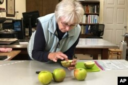 """In this Oct. 30, 2019, photo, Joanie Cooper, of the Temperate Orchard Conservancy, examines a rare apple in her lab in Molalla, Oregon. Cooper and her colleagues have helped identify many of the 13 """"lost"""" apple varieties that have been rediscovered in recent years by the Lost Apple Project in eastern Washington and northern Idaho. (AP Photo/Gillian Flaccus)"""