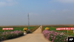 Agricultural Reform in North Korea