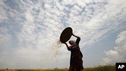 尼泊爾展開新政治進程。