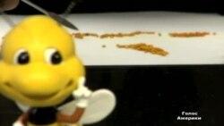 Пестициди вбивають бджолині колонії