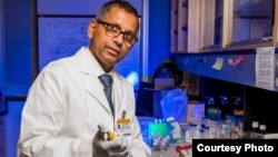 Kattesh Katti, PhD, University of Missouri, prepares gold nanoparticles in his lab.(Credit Justin Kelley, University of Missouri)