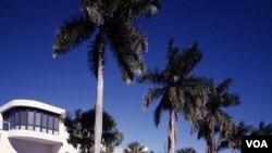Fort Myers, Florida, tempat Thomas Edison membangun rumah musim dingin. (Carol M. Highsmith)