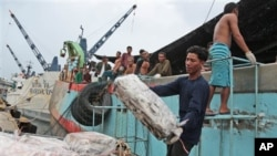 Workers unload frozen fish from a Thai fishing boat in Ambon, Indonesia. Large numbers of migrants pass through Thailand each year.
