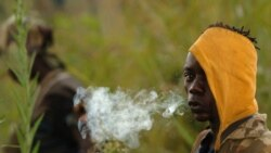 Moko na basimba minduki ya FRPI (Force ya résistance ya Ituri) pene na Tchei, Ituri, 28 juillet 2006.