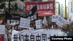 陸訪民參與香港7.1大遊行 (劉衛平)
