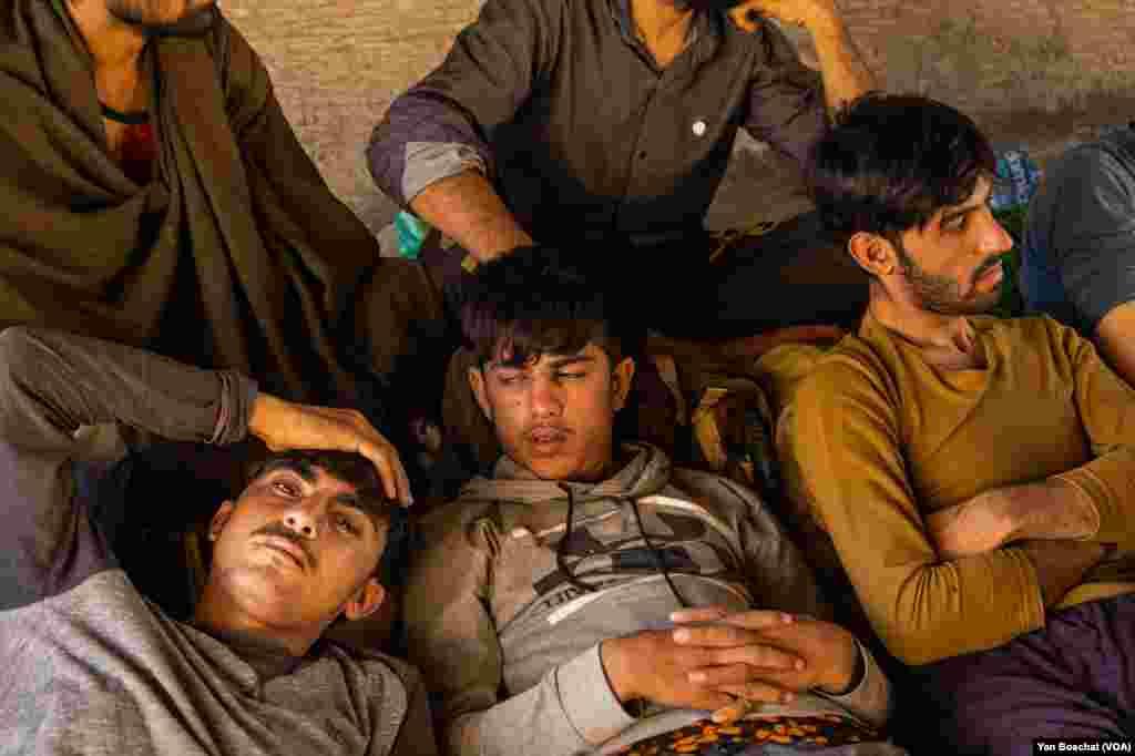ډیری دغه افغان پناه غوښتونکي ځوانان او هلکان دي چې د ۱۸کالو ټیټ عمر لرونکي هم په کې شامل دي.
