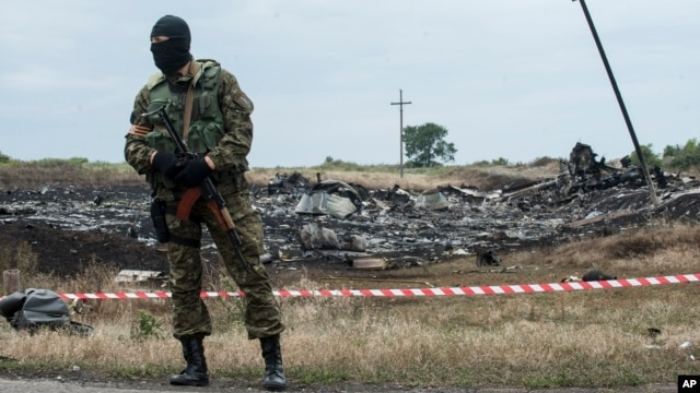 A pro-Russian fighter guards the crash site of a Malaysia Airlines jet near the village of Hrabove, eastern Ukraine, July 19, 2014.