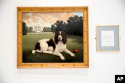 "This Wednesday, Jan. 9, 2019, photo shows ""Millie on the South Lawn"" by Christine Merrill, alongside a letter from former first lady Barbara Bush on display at the American Kennel Club Museum of the Dog in New York. The museum opens Feb. 8 in midtown Manh"