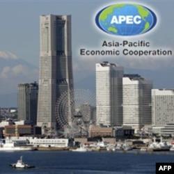 Samit APEC-a održava se 13. i 14. novembra u Jokohami.