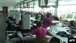 Shkodra, strategji ekonomike mbështetur tek bizneset që operojnë për eksportin