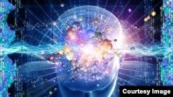 مصرف انرژی دماغ در هنگام خواب و بیداری یکسان است.