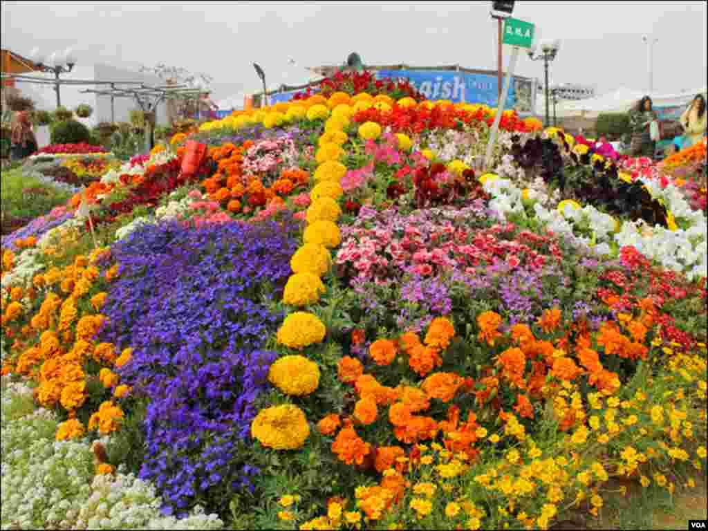 نمائش میں ساحلِ سمندر پر واقع پارک کو مختلف رنگوں اور اقسام کے پھولوں سے سجایا گیا