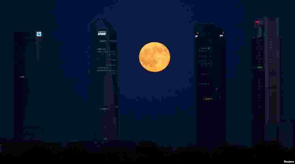ព្រះចន្ទពេញវង់រះនៅចន្លោះអគារនានានៅក្នុងតំបន់ពាណិជ្ជកម្ម Four Towers ក្នុងក្រុង Madrid ប្រទេសអេស្ប៉ាញ កាលពីថ្ងៃទី៩ ខែកក្កដា ឆ្នាំ២០១៧។