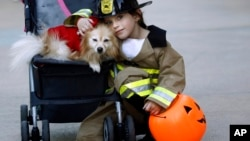 Kacy Crain poses with her dog while taking a break from collecting Halloween candy at the Lincoln Road shopping complex, Wednesday, Oct. 31, 2012, in Miami Beach, Fla. (AP Photo/J Pat Carter)