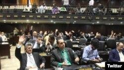 El parlamento venezolano de mayoría opositora, dio apoyo a la destituida fiscal Luisa Ortega Díaz y rechazó la Constituyente del Gobierno de Nicolás Maduro.