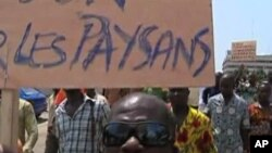 Ivorian farmers protest an ongoing cocoa embargo by major foreign export companies