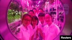 چاند کے فولادی محل میں چینی طالب علم پتوں سے آکسیجن حاصل کرنے کے تجربات کررہے ہیں۔ 9 جولائی 2017