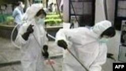 """Hồng Kông đã nâng mức cảnh báo cúm gà lên mức """"nghiêm trọng"""""""